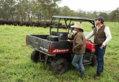 Nindooinbah Cattle Breeding - Angus, Brangus, UltraBlack