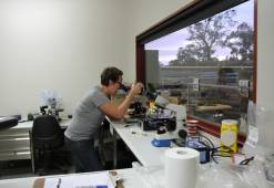 tamara loving the lab work - Semen testing