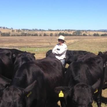 Testimonial from Paraguayan Beef Breeding Consultant
